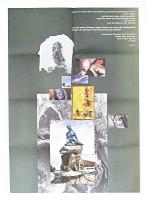http://www.jennyschaefer.de/files/gimgs/th-126_annahmenshrug-jennyschaefer.jpg